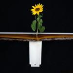 Console Fleur création Noyer Hetre 01